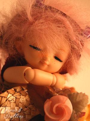 Chibiloo's Puki : Pink Sugar est arrivée ! Pukisugararrivee03